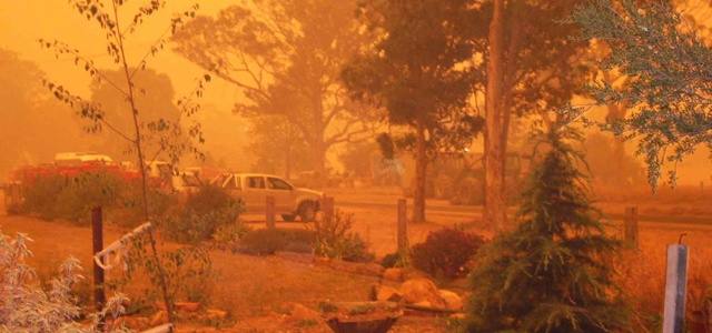 Tasmanian Bushfire Disaster Appeal