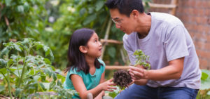 Fatherhood – the quiet revolution