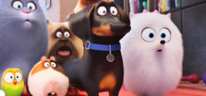 Should you care about the secret life of pets?
