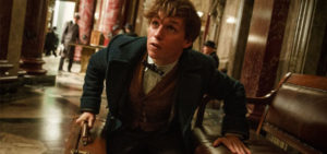 Fantastic beasts spin their magic