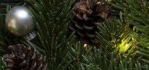Is Christmas A Pagan Festival?