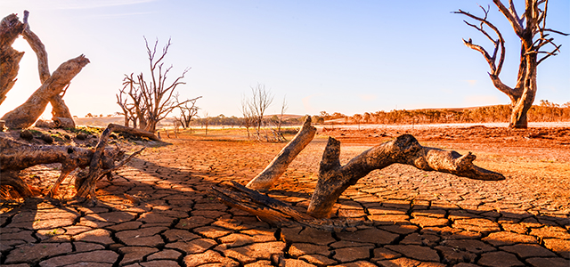 Image result for the drought in australia
