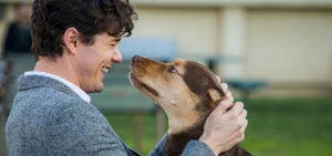Heartwarming tale of 'A Dog's Way Home'
