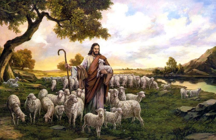 The Good Shepherd – A reflection on Psalm 23 and John 10:1-10 – Insights Magazine