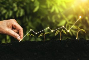 Risky business: 54 percent of Australian companies plan to slow green initiatives due to COVID