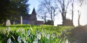 Helping churches grow
